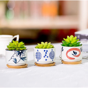 Nattol Assorted Mini 3 Inch Ceramic Succulent Planter Pots, Set of 3 @ Amazon