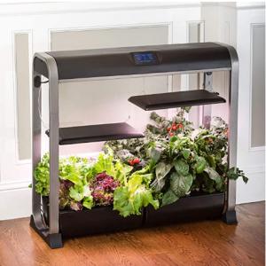 限今天:Aerogarden 室內無土水培種植器 打造室內小菜園 @ Amazon
