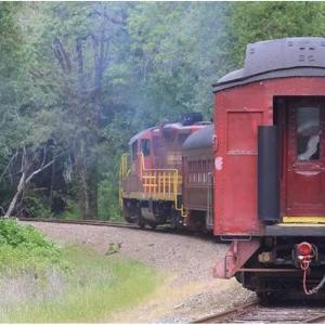 Groupon - 北加州海滨小城布拉格堡 7英里景观小火车之旅,8折,穿行原始红木林