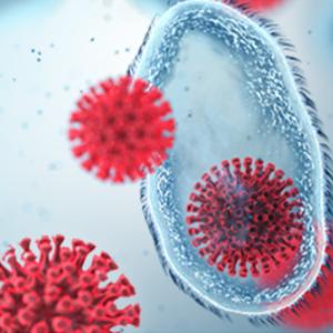 COVID-19 Antibody Test @ HealthLabs.com