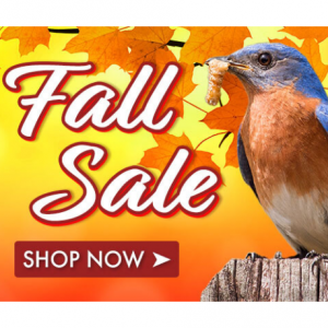Fall Sale @ Duncraft
