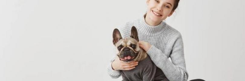 2021加拿大购买及领养宠物详细流程(手续+费用+渠道+注意事项)