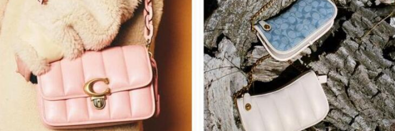 Coach Outlet vs. Coach Retail: Differences, Quality & Price 2021